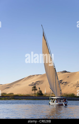 Felucca, a traditional wooden sailing boat, on the Nile, Egypt, Africa - Stock Photo