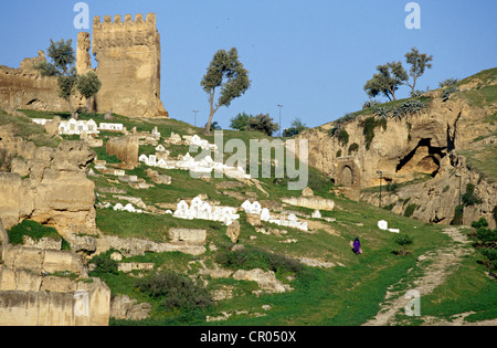 Morocco, Middle Atlas, Fez, Imperial City, Merinid dysnasty tombs - Stock Photo