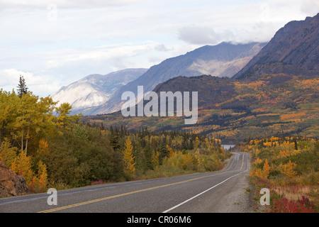 South Klondike Highway, Indian summer, leaves in fall colours, autumn, White Pass, Tagish Lake behind, Yukon Territory, - Stock Photo