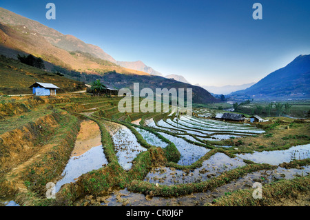 Irrigated rice terraces, rice paddies in Sapa or Sa Pa, Lao Cai province, northern Vietnam, Vietnam, Southeast Asia, - Stock Photo