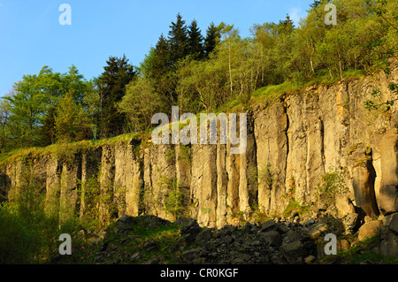 Natural monument of basalt columns, also called churns, on Poehlberg mountain, Annaberg-Buchholz, Erzgebirge, Saxony - Stock Photo