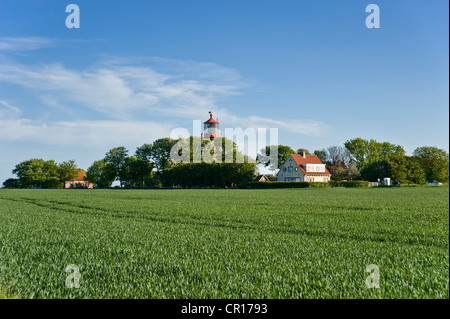 Lighthouse on the cliff line of Staberhuk, Island of Fehmarn, Baltic Sea, Schleswig-Holstein, Germany, Europe - Stock Photo