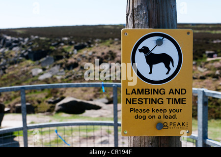 Sign on footpath over moorland asks people to keep their dogs on the lead at lambing and bird nesting time. - Stock Photo