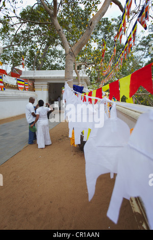 People at Sri Maha Bodhi (sacred bodhi tree), Anuradhapura, (UNESCO World Heritage Site), North Central Province, - Stock Photo
