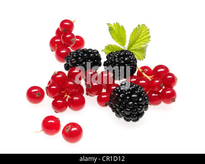 Berries, currants, raspberries, blackberries - Stock Photo