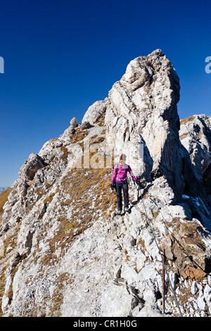 Climber on Bepi Zac climbing route in San Pellegrino Valley above the San Pellegrino Pass, Dolomites, Trentino, - Stock Photo