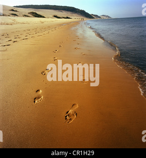 Footprints in sand on beach - Stock Photo