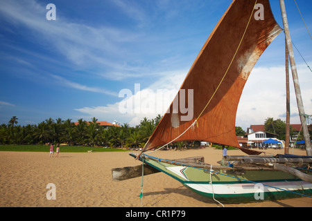 Oruwa (outrigger canoe) on Negombo beach, North Western Province, Sri Lanka - Stock Photo