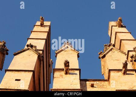 Gargoyles on the south facade of La Seu Cathedral, Palma de Majorca, Majorca, Balearic Islands, Spain, Europe - Stock Photo