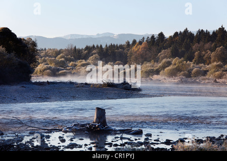 Isar with driftwood, in the back the Alps, Isar floodplains, Geretsried, Upper Bavaria, Bavaria, Germany, Europe - Stock Photo
