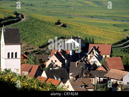 France, Haut Rhin, Alsace Wine Road, Kazenthal village in the middle of the vineyards - Stock Photo