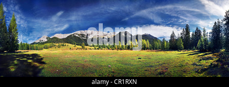 Alpine meadows and mountain forest with a view on the Wettersteingebirge range, Mt. Suedwand in Leutasch, Tyrol, - Stock Photo