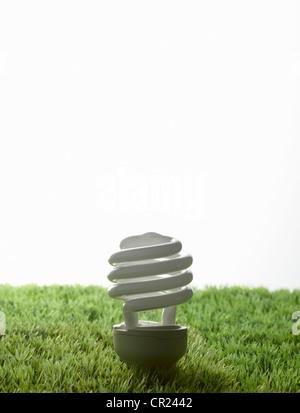 Fluorescent light bulb in grass - Stock Photo