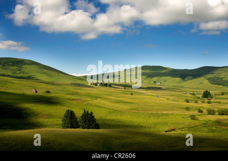 Scenic landscape of meadows and rolling hills of Cezallier, Auvergne, France, Europe