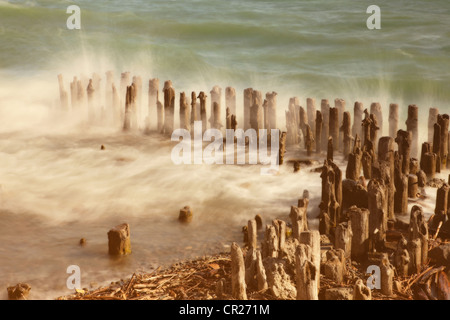 Waves breaking over wood piles - Stock Photo