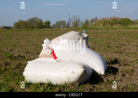 cereal seeds in sacks waiting at the edge of the field - Stock Photo