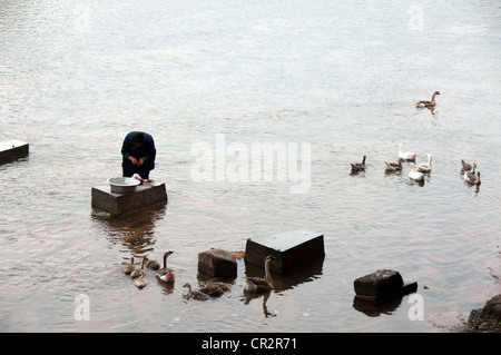 A woman slaughtering a duck in the middle of a river, Chejiang Dong Village, Southern China - Stock Photo