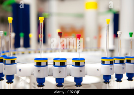 glass test tubes vials in chemistry laboratory - Stock Photo