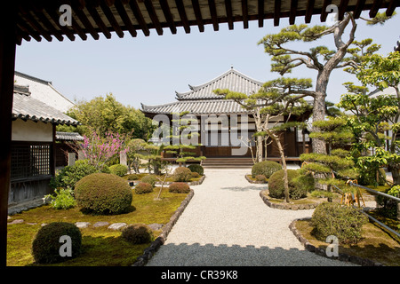 Japan, Honshu Island, Kinki Region, city of Nara - Stock Photo