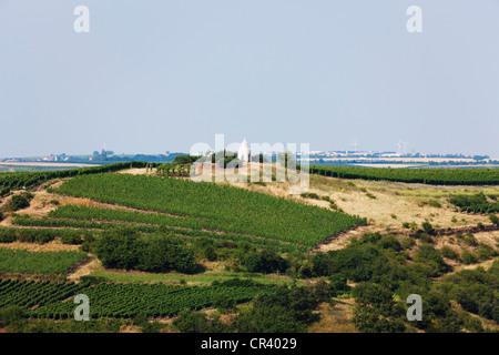 Trullo or round house in a vineyard, Flonheim, Rhine-Hesse region, Rhineland-Palatinate, Germany, Europe - Stock Photo