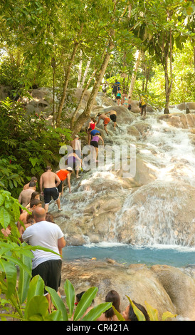 Tourists Bathing And Climbing The Dunn S River Falls Ocho