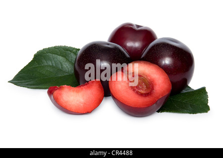 Some plums with two slices of plum over white background - Stock Photo