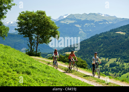 France, Savoie, Valmorel, mountain biking above Quarante-Planes and view on the Haute Tarentaise - Stock Photo