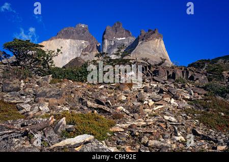 Chile, Magallanes and Antartica Chilena Region, Ultima Esperanza Province, Torres del paine National Park, stones - Stock Photo