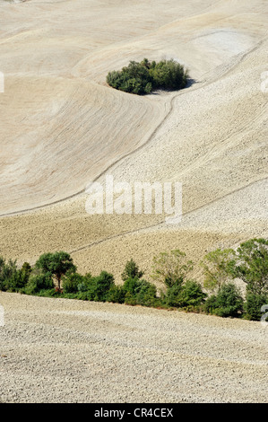 Landscape south of Siena, Crete Senesi, Tuscany, Italy, Europe - Stock Photo