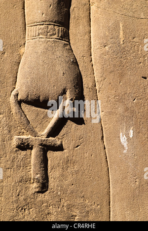 sobek ndash hieroglyphic inscriptions - photo #48