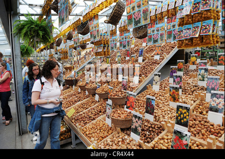 Netherlands, Amsterdam, bulbs on flower market of Singel canal - Stock Photo