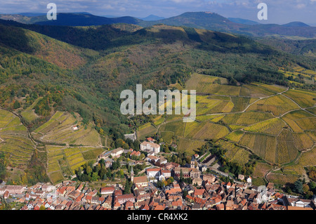 France, Haut Rhin, Ribeauville and its vineyard at the bottom of Vosges Massif (aerial view) - Stock Photo