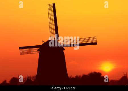 Windmill at sunset, Schermerhorn, Schermer, North Holland, Holland, Netherlands, Europe - Stock Photo
