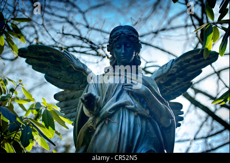 Angel statue at Ohlsdorf Cemetery in Hamburg, Germany, Europe - Stock Photo