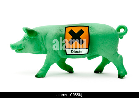 Green miniature pig with dioxin warning sticker, symbolic image for contaminated pork - Stock Photo