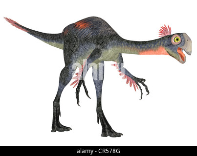 Illustration of a Gigantoraptor (dinosaur species) isolated on a white background - Stock Photo