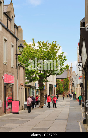 Scene in pedestrianised main street with The Big Tree and people shopping in Albert Street Kirkwall Orkney Islands - Stock Photo