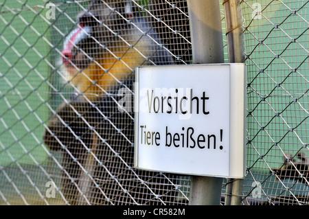 Sign, 'Vorsicht Tiere beissen' or 'Warning animals bite' on a monkey cage, Hellabrunn zoo, Munich, Bavaria, Germany, - Stock Photo