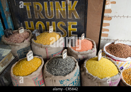 Moong Dhal, Urid Dhal and other types of lentils for sale on the market in the suburb of Paharganj, New Delhi, India, - Stock Photo