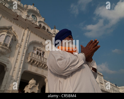 Sikh devotee praying at the entrance into the Golden Temple Complex, Amritsar, Punjab, India, Asia - Stock Photo