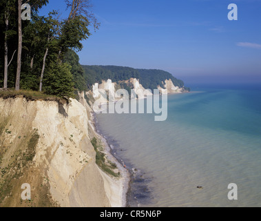 Chalk cliffs and a beech forest (Fagus sylvatica), a UNESCO World Heritage natural site, Jasmund National Park, - Stock Photo