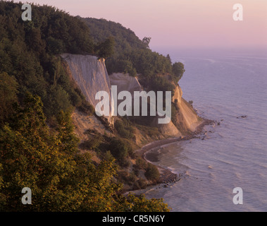 Chalk cliffs and a beech forest (Fagus sylvatica) at sunrise, UNESCO World Heritage natural site, Jasmund National - Stock Photo