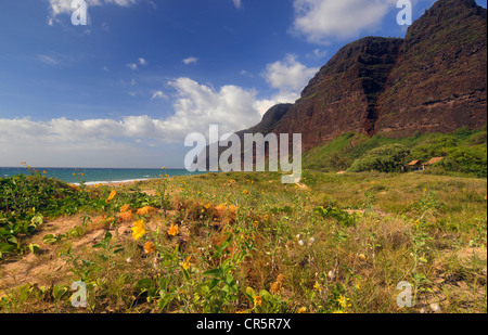 Polihale Beach, or Barking Sands Beach, Polihale State Park, Kauai, Hawaii, USA - Stock Photo