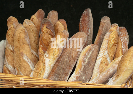 France, Paris, the Marais District, Marche des Enfants Rouges, bread - Stock Photo