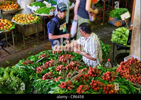 Mauritius, West Coast, Port Louis District, Port Louis, fruits and vegetables market, litchis seller - Stock Photo
