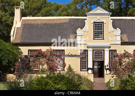 South Africa, Western Cape, Somerset West, Vergelen vineyard domain funded by former governor Willem Adriaan Van - Stock Photo