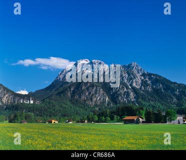Schwangau, Allgaeu panorama with mountains and hut, Schloss Neuschwanstein Castle, left, Bavaria, Germany, Europe - Stock Photo