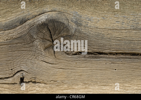 Wooden board, detailed view of a knothole with cracks - Stock Photo