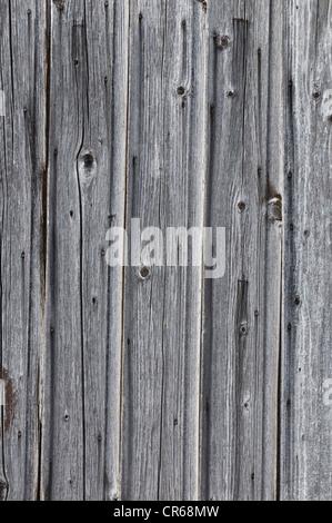 Wood panelling, background - Stock Photo