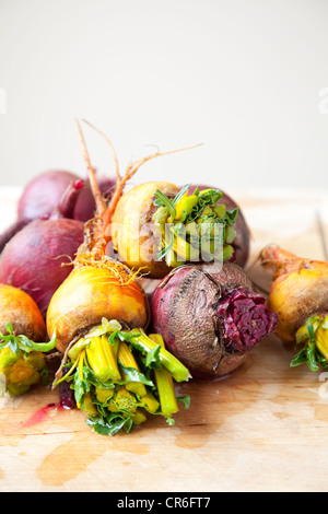 Group of beets and turnips - Stock Photo